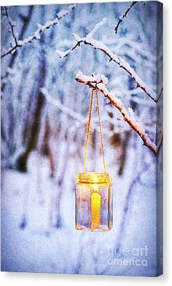 A Winters Tale Canvas Print by Tim Gainey