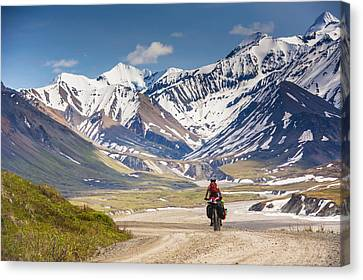 A Woman Bicycle Touring In Denali Canvas Print by Michael Jones