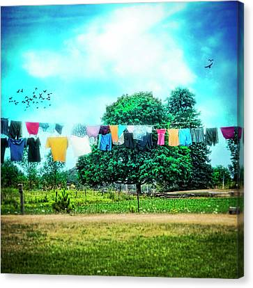 A Woman's Work Is Never Done Canvas Print by Tammy Wetzel