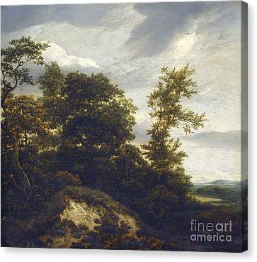 A Wooded Dune Landscape Canvas Print by Celestial Images