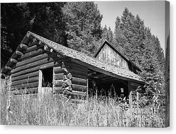 Abandoned Homestead Canvas Print by Richard Rizzo