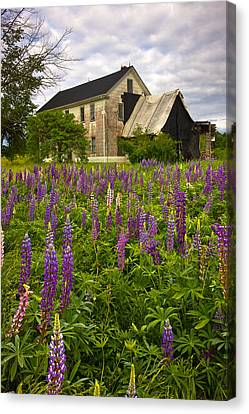 Abandoned House Canvas Print by Benjamin Williamson