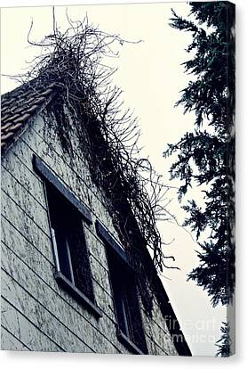 Abandoned House Canvas Print by Sarah Loft
