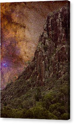 Aboriginal Dreamtime Canvas Print by Charles Warren