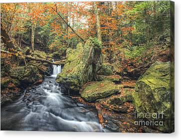 Above Mohawk Falls October 2012 Canvas Print by Aaron Campbell