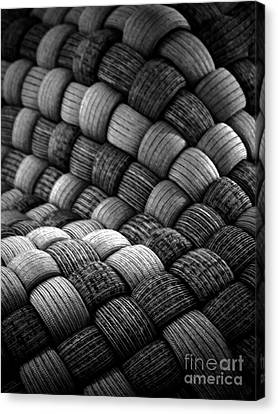Abraiding Canvas Print by James Aiken