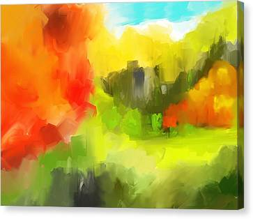 Abstract 112210 Canvas Print by David Lane