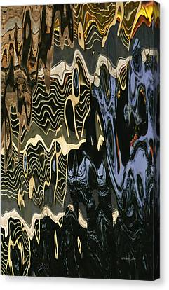 Abstract 13 Canvas Print by Xueling Zou