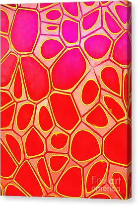 Abstract Cells 1 Canvas Print by Edward Fielding