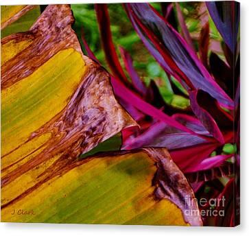 Abstract Garden Canvas Print by John Clark