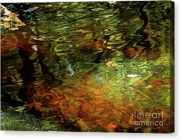 Abstract Of St Croix River 04 Canvas Print by Jimmy Ostgard