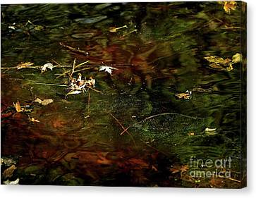 Abstract Of St Croix River Canvas Print by Jimmy Ostgard