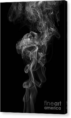 Abstract Vertical Monochrome White Mood Colored Smoke Wall Art 03 Canvas Print by Alexandra K