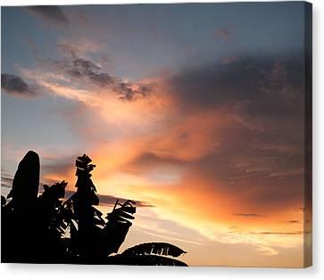 Abuja Sunset Canvas Print by Hakon Soreide