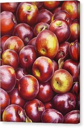 Abundance Canvas Print by Ariel Freeman