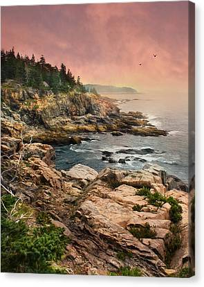 Acadia National Park Canvas Print by Lori Deiter