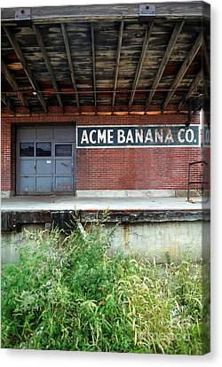 Acme Banana Company Strip District Pittsburgh Canvas Print by Amy Cicconi