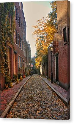 Acorn St. 3 Canvas Print by Joann Vitali