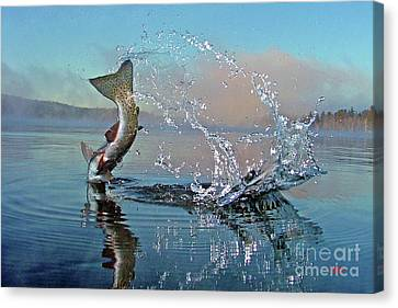 Adirondack Life Canvas Print by Brian Pelkey