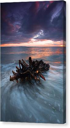 Adrift Canvas Print by Mike  Dawson