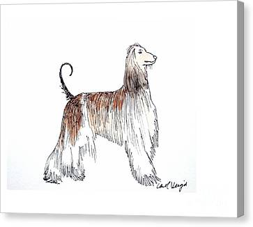 Afghan Hound Canvas Print by Carol Veiga