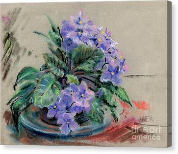 African Violet Canvas Print by Donald Maier