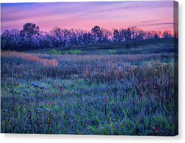 After Sunset - Blue Hour At Retzer Nature Center Canvas Print by Jennifer Rondinelli Reilly - Fine Art Photography
