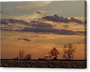 After The Harvest Canvas Print by Theresa Campbell