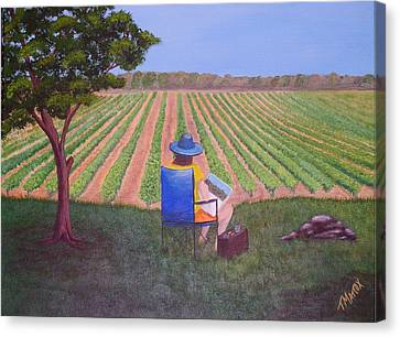 Afternoon In The Vineyard Canvas Print by Tim Mattox