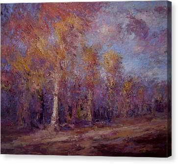 Afternoon Light On The Trees Canvas Print by R W Goetting
