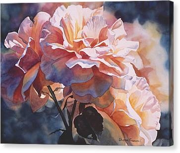 Afternoon Rose  Canvas Print by Sharon Freeman