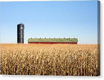 Against The Grain Canvas Print by Todd Klassy
