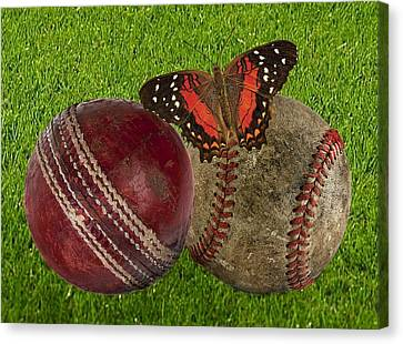 Age Basketball And Cricket Ball Canvas Print by Manfred Lutzius