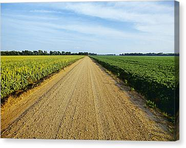 Agriculture - A Gravel Country Road Canvas Print by Bill Barksdale