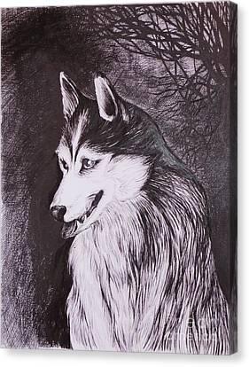 Akela Canvas Print by Anna  Duyunova