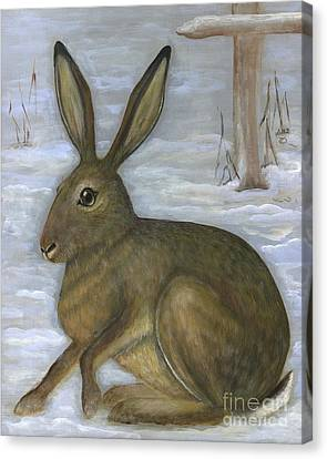 Albert The Hare Canvas Print by Anna Folkartanna Maciejewska-Dyba