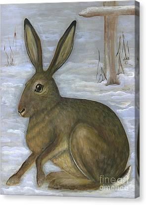Albert The Hare Canvas Print by Anna Folkartanna Maciejewska-Dyba