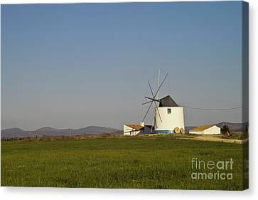 Algarve Windmill Canvas Print by Heiko Koehrer-Wagner