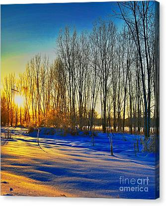 All That Color Canvas Print by Robert Pearson