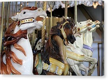 All The Pretty Horses Canvas Print by Anne Babineau