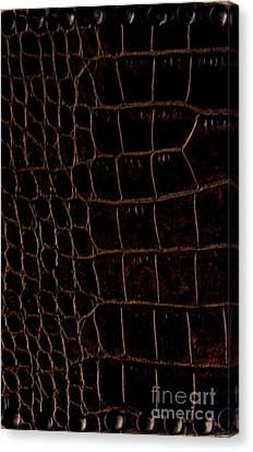 Alligator Look Abstract Canvas Print by Marsha Heiken