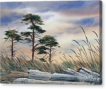 Allure Of The Coast Canvas Print by James Williamson