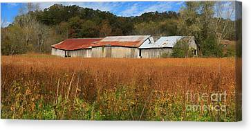 Almost Autumn Canvas Print by Benanne Stiens