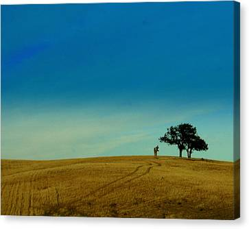Almost Home Canvas Print by Kerry Reed