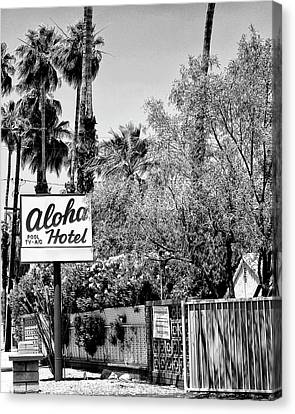 Aloha Hotel Bw Palm Springs Canvas Print by William Dey