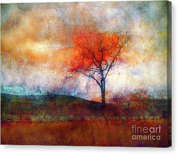 Alone In Colour Canvas Print by Tara Turner