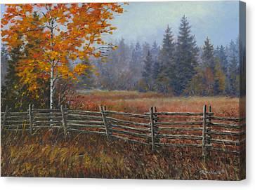 Along The Stoney Batter Road Canvas Print by Richard De Wolfe