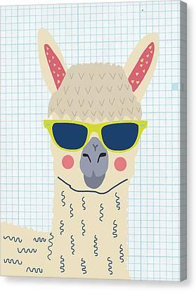Alpaca Canvas Print by Nicole Wilson