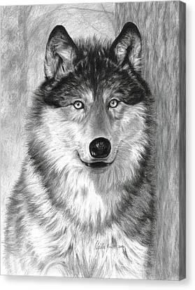 Alpha Canvas Print by Carla Kurt