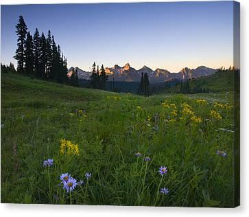 Alpine Dawn Canvas Print by Mike  Dawson
